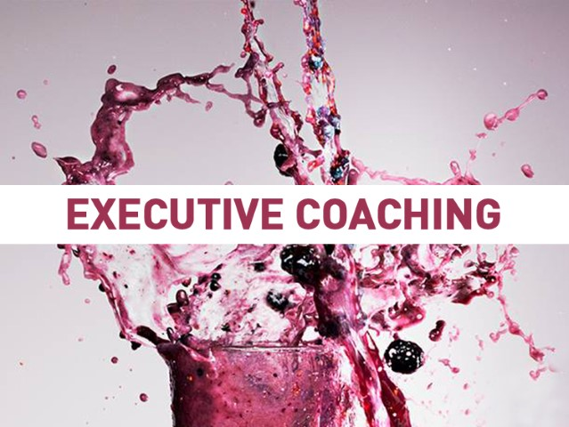 EXECUTIVE COACHING (Small)