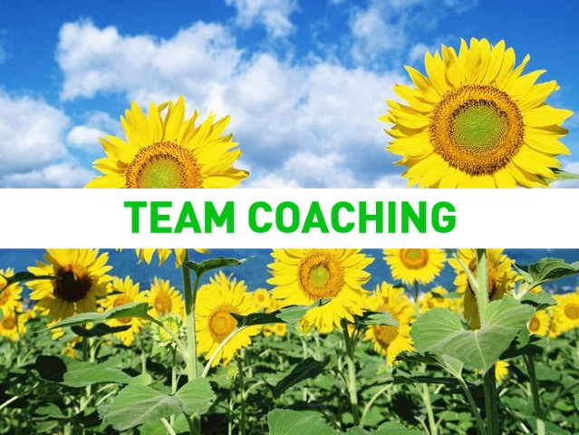 team coaching (Small)